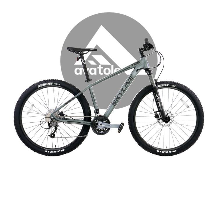 Xe đạp địa hình TRS Skyline màu đen xám