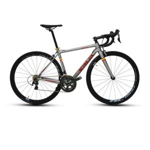 Sava Carbon X2 Limited Màu Dỏ Xám