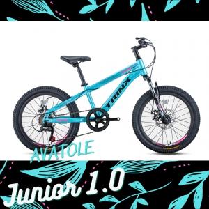 Xe đạp trẻ em TrinX Junior1.0 màu đen xanh ngọc