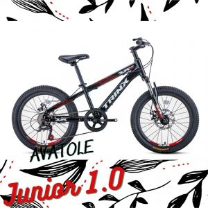 Xe đạp trẻ em TrinX Junior1.0 màu trắng đen