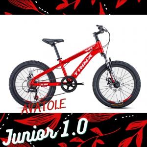 Xe đạp trẻ em TrinX Junior1.0 màu trắng đỏ