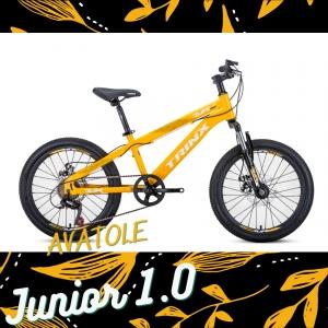 Xe đạp trẻ em TrinX Junior1.0 màu trắng vàng