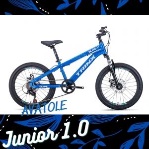 Xe đạp trẻ em TrinX Junior1.0 màu trắng xanh dương